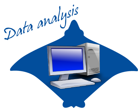 Learn more on data analysis